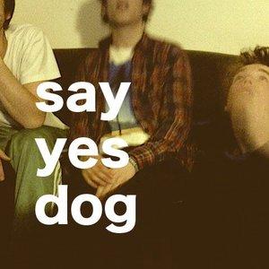 A Friend Say Yes Dog Lyrics