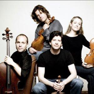 New Year s Day Lyrics - Vitamin String Quartet